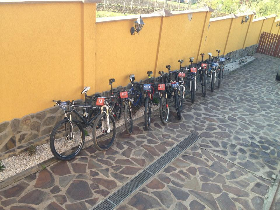 Pregatiti de lupta, Probikers maraton Oradea 2014